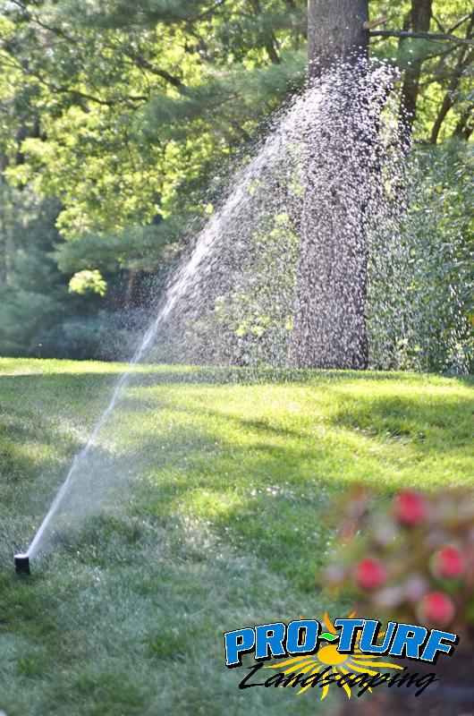 Irrigation (6)